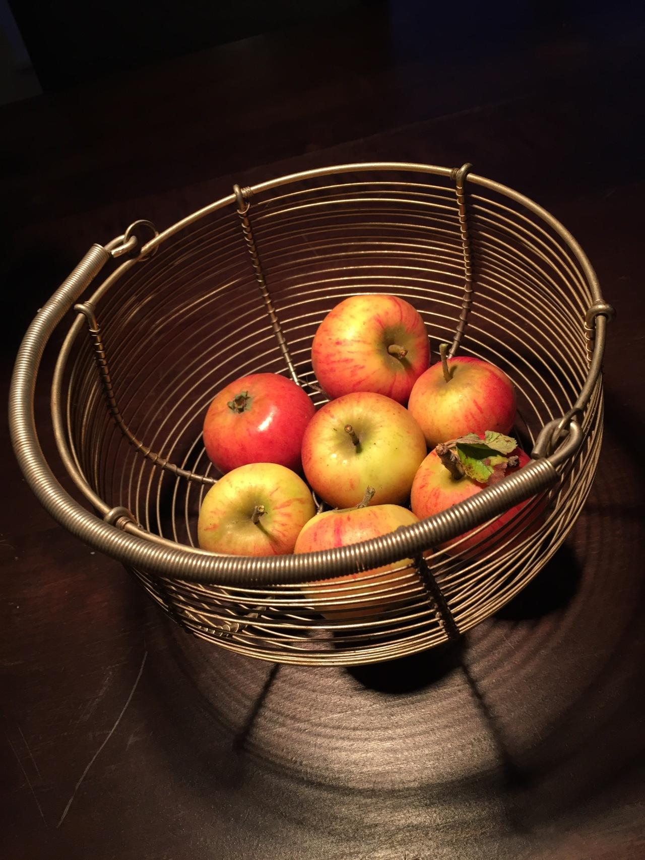 Flan aux Pommes | FlandrischerApfelkuchen